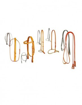Complete_gag_polo_bridle_1