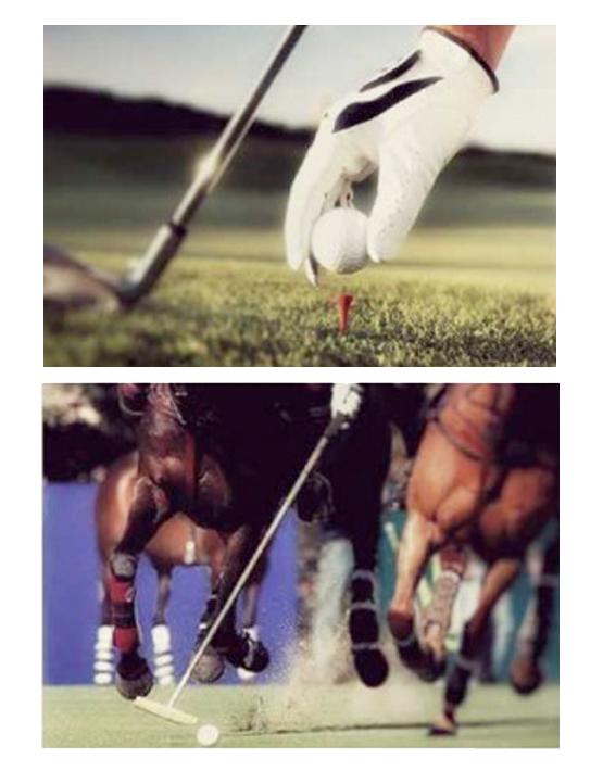 golf_polo